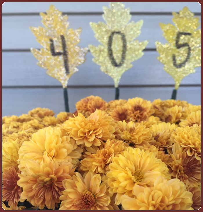 house numbers in potted plant