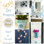 Sexy DIY Projects + A Little Bird Told Me #8
